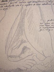 Desenho sobre cartão Paloma Villela
