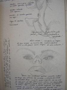 Desenho sobre cartão Paloma Villela\ Fracmentos de palavras de autores desconhecidos.