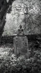 Buddha pequeno