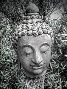 cabeça Buddha
